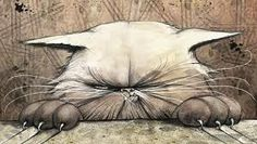 I took a test that said I was a cat personality. I agree because this picture is me every second of every day