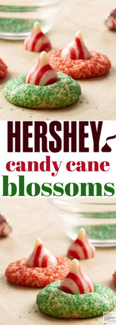 "Hershey Kisses Candy Cane Blossoms! Sugar cookies with Hersheys peppermint Kisses, just like Peanut Butter Blossoms! Nothing says ""holiday"" like KISSES Chocolates in candy cane flavors on top of warm and delicious sugar cookies! Add this to your Christmas and Holidays cookies recipes board!"