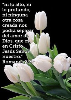 Christian Verses, Christian Devotions, Gods Love Quotes, Quotes About God, Spanish Christian Music, Tips To Be Happy, Pictures Of Christ, Reality Shows, Devotional Songs