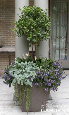 The Container Garden Guide - The Fabulous Garden - Learn about the Container Garden Shopping Guide - Container Flowers, Container Plants, Outdoor Planters, Outdoor Gardens, Garden Planters, Topiary Garden, Topiary Trees, Moss Garden, Topiaries