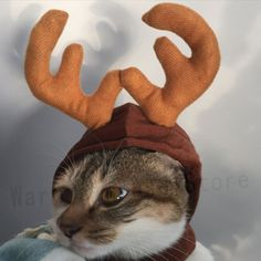 Ungfu Mall Christmas Costume Pet Cat Dog Antlers Hat Cap Pet Dog Clothes Reindeer Horns Headwear Puppy Doggy Kitten Headband Christmas Collar *** You can get additional details at the image link. (This is an affiliate link) Reindeer Costume, Pet Halloween Costumes, Pet Costumes, Reindeer Hat, Reindeer Antlers, Christmas Costumes, Costume Chat, Christmas Animals, Kitty Cats