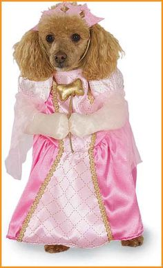 Pets Halloween Costumes Princess Costume for Pets HalloweenCostumes4u.com