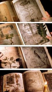 The pages from the Practical Magic spellbook are beautiful and would make a great background for journaling pages. katracraft: (via Book of shadows inspiration - Practical magic … Wiccan, Witchcraft, Practical Magic Book, Magie Harry Potter, Baba Yaga, Witch Aesthetic, Book Of Shadows, Altered Books, Bookbinding