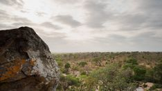 A pan and linear timelapse moving past granitic rock boulders revealing the distant landscape and dry riverbed at sunrise with clouds moving. Kruger National Park, Hd Video, Bouldering, Stock Footage, Mount Rushmore, Sunrise, Past, Clouds, Rock
