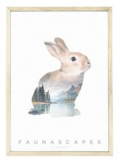 Faunascapes rabbit A3 poster