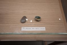 I love this!!The Museum of Stones – Jimmie Durham by saschapohflepp, via Flickr