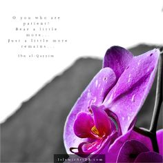 O you who are patient! Bear a little more. Just a little more remains. Religious Quotes, Islamic Quotes, Happy Quotes, Life Quotes, Islam Muslim, Really Cool Stuff, Inspirational Quotes, Deen, Quran