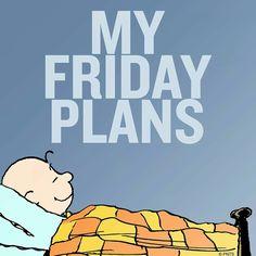 My Friday                                                       …