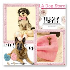 """LA Dog Store"" by ladogstores ❤ liked on Polyvore"