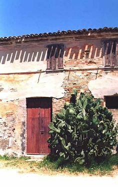 vintage homes in Italy | Old world home in the Marche region of Italy