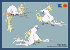 [Rio_blue_sky_model_sheet_113.jpg]