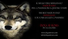 dogs are our passion but we love all animals  www.dogsatroses.com  #dogs #collars #petaccessories