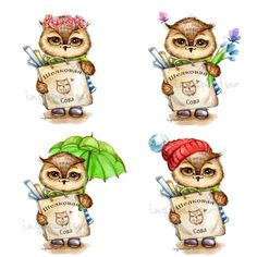 Wall | VK Owl Dress, Burrowing Owl, Nocturnal Birds, Paper Owls, Happy Mail, Wise Owl, Owl Always Love You, Owl Pictures, Cute Art
