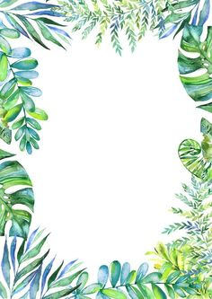 Frais de feuilles vertes de programme d'invitation de matériau de fond, Lettre D'invitation, Des Plantes, Une Liste De Programmes, l'image de fond