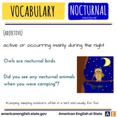 Vocabulary: Nocturnal