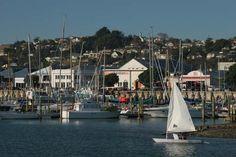 Napier, New Zealand - Ahuriri