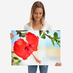 Red Hibiscus flower poster by from collection. By buying 1 Displate, you plant 1 tree. Hibiscus Flowers, Poster Prints, Metal, Red, Beautiful, Metals