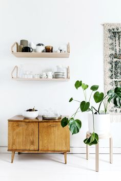 Sisusta viherkasveilla: Nämä kasvit ovat nyt muodissa | Gloria Decorating Your Home, Interior Decorating, Beautiful Interior Design, Scandinavian Home, Minimalist Home, Home Decor Styles, Decoration, Home And Living, Interior Inspiration
