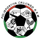 1974, S.P. Cailungo (Borgo Maggiore, San Marino) #SPCailungo #BorgoMaggiore #SanMarino (L13500) Soccer Logo, Football Team Logos, Soccer Ball, Badge, San, Soccer, Coat Of Arms, Badges, Football