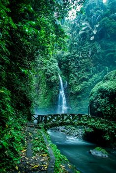 Manado,north celebes indonesia