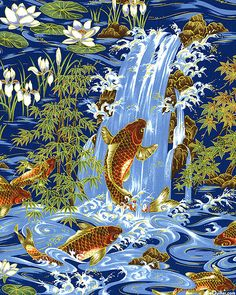 Koi Frolic - Quilt Fabrics from www.eQuilter.com