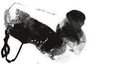 Liebe Kannibalen Godard von Thomas Jonigk - nach dem Film Week-End von Jean-Luc Godard Premiere am 4.12.2013 im Nord http://www.schauspiel-stuttgart.de/spielplan/premieren/liebe-kannibalen-godard/