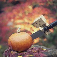 Danbo prepares for halloween
