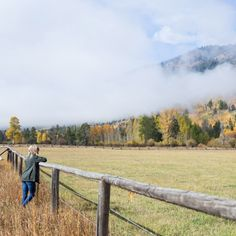 My guide to visiting Jackson Hole in October for fall weather and fall leaves. I spilled a little on what to wear, where to eat and when to see fall leaves. Autumn Inspiration, Travel Inspiration, Colorado Winter, Skiing Colorado, Rhyme And Reason, Snow Skiing, Fall Weather, Jackson Hole, Winter Scenes