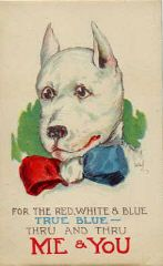 For the red, white and blue. True Blue. Thru and Thru ME and YOU.    vintage pit bull