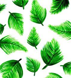 sarafunduk.com downloads feeling-tropical tropical-iphone-bg.jpg