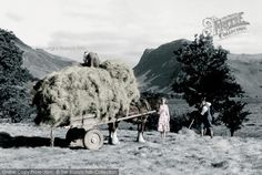 A wagon is loaded with hay in Buttermere in the 1950s. http://www.francisfrith.com/buttermere/buttermere-haymaking-c1955_b260064p #farming Buttermere, Haymaking c.1955