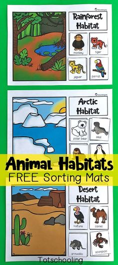 FREE printable sorting mats for preschoolers and kindergarten kids to learn about animals and their habitats. Great science and nature activity that kids will love! Includes rainforest, ocean, desert, polar, woodland and wetland habitats. for kindergarten Nature Activities, Science Activities For Kids, Science Lessons, Kindergarten Activities, Science Classroom, Kids Math, Chemistry Experiments, Sorting Kindergarten, English Kindergarten
