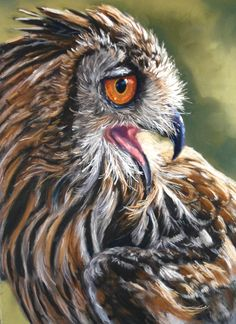 Look at this beautiful Eagle Owl in pastels by Catherine Inglis. Available now on ArtTutor.