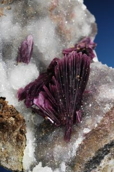 Erythrite, or red cobalt is a secondary hydrated cobalt arsenate mineral  Locality: Morocco