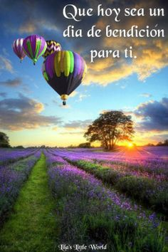 Picture of Beautiful image of stunning sunset with atmospheric clouds and sky over vibrant ripe lavender fields in English countryside landscape with hot air balloons flying high stock photo, images and stock photography. Pretty Pictures, Cool Photos, Live Photos, Amazing Photos, Pictures Images, Nature Pictures, Beautiful World, Beautiful Places, Beautiful Scenery