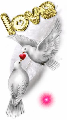 I love you my sweetest Angel Natalie ❤ I love you my sweet angel Nata . Love Heart Gif, Love Heart Images, I Love You Pictures, Love You Gif, Beautiful Love Pictures, Cute Love Gif, Beautiful Gif, Beautiful Birds, Beautiful Friend
