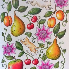 Finished this page and new VIDEO is up  ps.. What is your favorite animal? . #blomstermandala #mariatrolle #chriscoloring #fruits #flowers #clematis #clematisjosephine #cats #kitties #coloring #colouring #coloringbook #adultcoloringbook #prismacolorpencils #ilovecat #ilovecats