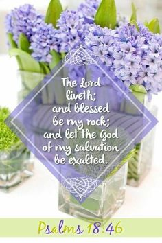 Psalm (KJV) - The LORD liveth; and blessed be my Rock; and let the God of my salvation be exalted. Bible Psalms, Bible Scriptures, Scripture Cards, Biblical Quotes, Bible Quotes, Prayer Quotes, Lord's Prayer, Blessed Quotes, Prayer Verses