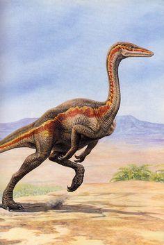Ornithomimus by John Sibbick