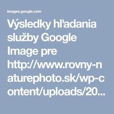 Výsledky hľadania služby Google Image pre http://www.rovny-naturephoto.sk/wp-content/uploads/2016/04/BIELA-PANI-0642.jpg