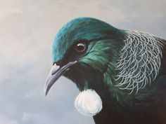 Jane Sinclair - Fine Art Painting, specialising in New Zealand Landscapes and Birds. Jane also offers Art Tuition through workshops or weekly classes. Bird Paintings On Canvas, Oil On Canvas, Tui Bird, New Zealand Landscape, New Zealand Art, Nz Art, Bird Illustration, Illustrations, Birds Eye View