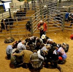 Rodeo cowboys, praying before riding Cowgirl And Horse, Cowboy Up, Cowboy And Cowgirl, Cowgirl Style, Rodeo Cowboys, Real Cowboys, Horse Quotes, Rodeo Quotes, Western Quotes