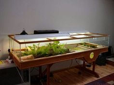 1000 Images About Turtle Tanks On Pinterest Turtle Tanks Turtles And Tanks
