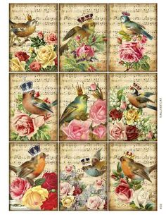 Majestic Songbirds Digital Collage Sheet Instant by GalleryCat