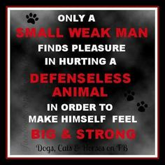 Give a voice to those who can't speak for themselves and speak up when you witness or suspect cases of animal abuse. Weak Men, Hunting Quotes, Stop Animal Cruelty, Animal Quotes, Dog Quotes, Animal Cruelty Quotes, Thats The Way, Animal Rights, Animals Beautiful