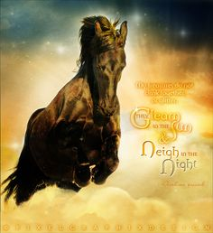 """""""My treasures do not clink together or glitter; They gleam in the sun and neigh in the night.""""  -Arabian Proverb  Art by PixelGraphix; facebook.com/PixelGraphixDesign"""