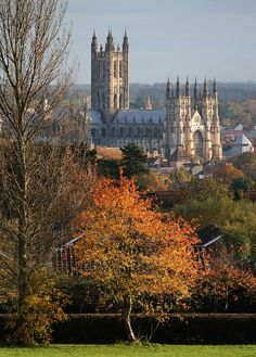 Canterbury Cathedral View from University of Kent, Autumn Tree. Awesome cathedral & darling little town! Canterbury Cathedral, Canterbury Kent, Canterbury Tales, Oh The Places You'll Go, Places To Visit, England And Scotland, Kent England, University Of Kent, Places In England