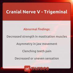 Cranial nerves visual memes to help you pass your nclex! #nursing #nurse #rn…