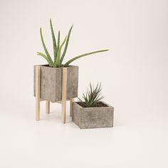 concrescence planter