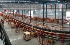 Loscam, Asia Pacific's, leading polling service provider, is pleased to announce the opening of its new super depot in Thailand. Khon Kaen, Press Release, Auckland, New Zealand, Pallet, Thailand, Asia, Humor, World